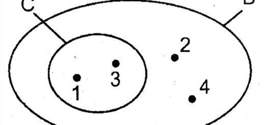 gia sư toán 6